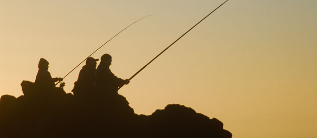 Struisbaai Harbour Wall - Fishing For Everyone